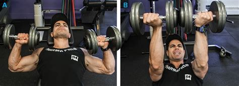 dumbbell bench press benefits build your best chest 5 must do pec exercises
