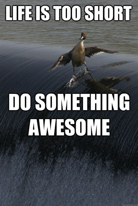 Short Memes - life is too short do something awesome misc quickmeme