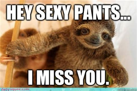 Funny Miss You Meme - hey sexy pants i miss you i miss you baby sloth