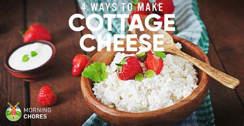 how to make cottage cheese how to make cottage cheese in 4 different and easy ways fb