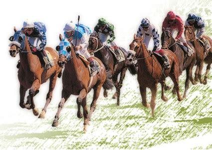 fotos caballos verga parada hoy reabrir 225 sus puertas el hip 243 dromo quot cruce del desierto
