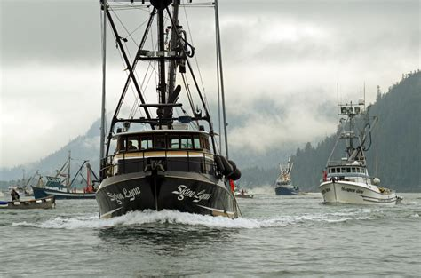alaska fishing boat investor amalga harbor seine fishing off to a slow start