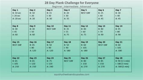 28 day challenge monthly fitness challenge 28 day plank challenge
