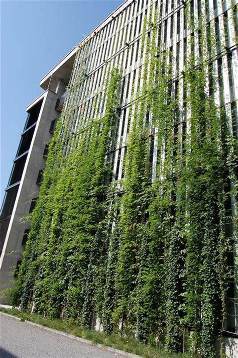 Vertical Garden Facade Outdoor Green Wall Mma Architectural Systems Ltd Green