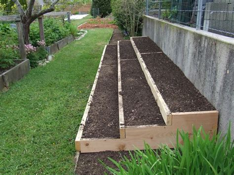 how to plant strawberries in a raised bed growing strawberries in raised beds google search a