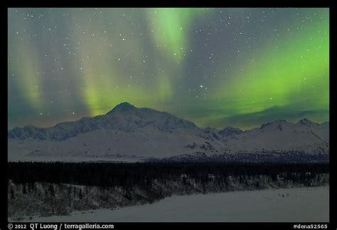 denali national park northern lights picture photo northern lights above mt mckinley denali
