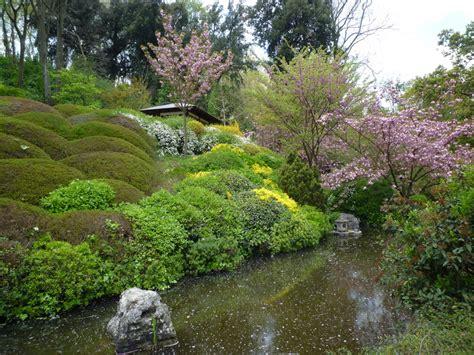 giardino dei ciliegi roma hanami la festa delle fioriture dei ciliegi a roma di