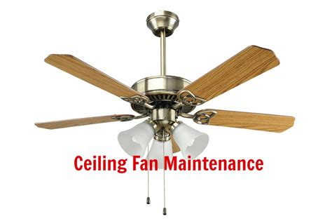 Ceiling Fan Maintenance home maintenance tip ceiling fan maintenace the stabilizor
