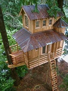 2 story tree house plans standout treehouse design out on a limb