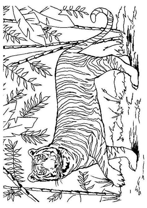 Coloriage D Un Tigre Dans La Jungle Coloriages Animaux Coloriage Un Guepard Avec Les Animaux De La Jungle Dessin A Imprimer L