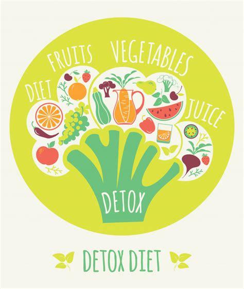 Curso Detox De Dinheiro Baixar by Ilustra 231 227 O Vetorial Da Dieta Detox Baixar Vetores Premium