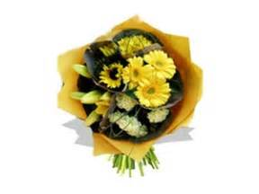Pot Sepeda 6 By Sun Florist true local flowers everywhere image of flowers