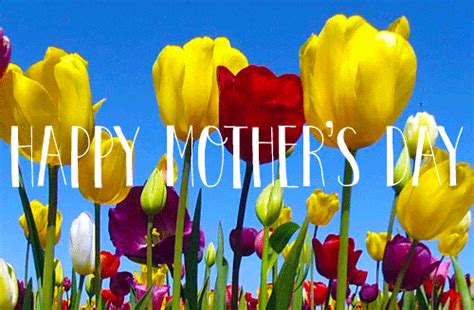 happy day gif happy mothers day gif find on giphy