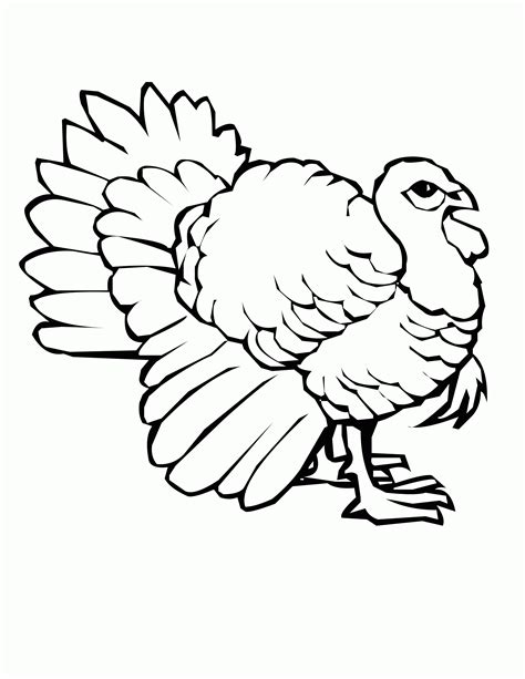 coloring pages of wild turkeys wild turkey coloring page coloring home