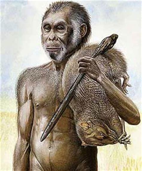 wajakensis apa itu wajakensis