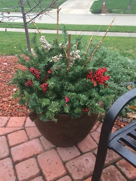 Outdoor Tree Planters by 1000 Ideas About Outdoor Trees On