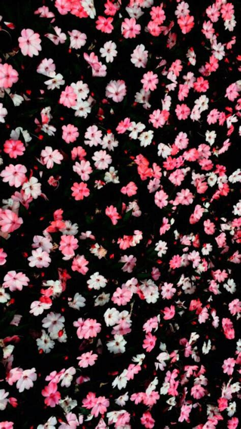 Repeat Trend Florals by Floral Background