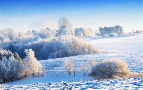 the winter winter the coldest season
