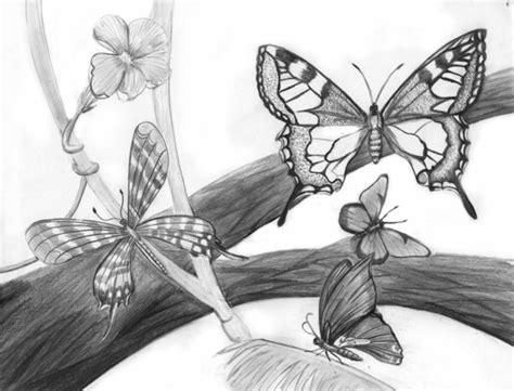 imagenes de mariposas a lapiz dibujos de mariposa a lapiz imagui