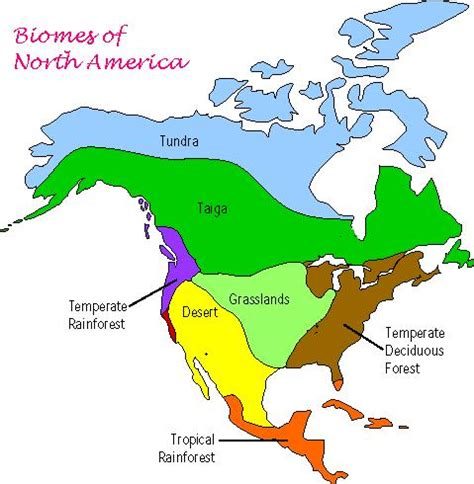 Biome Map Of North America by 301 Moved Permanently