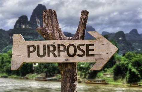 purpose of a purpose to do what