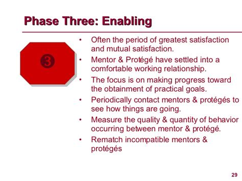 which stage of mentoring is most comfortable for the novice launching an effective mentoring program