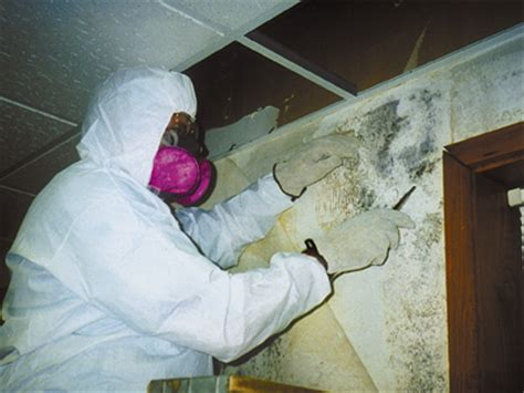 mold remediation in schools and commercial buildings guide mold us epa
