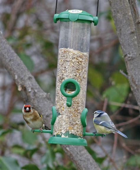 comedero para aves natural y biodegradable duendevisual navarra al natural nuevos visitantes en los comederos