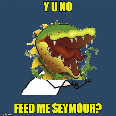 Feed Me Seymour Meme - dentist from the movie little shop of horrors imgflip