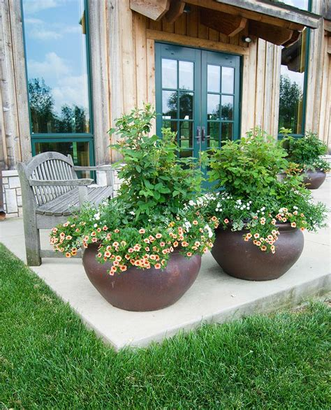 Garden Flower Pots Beautiful Container Gardening Ideas Inspired Home