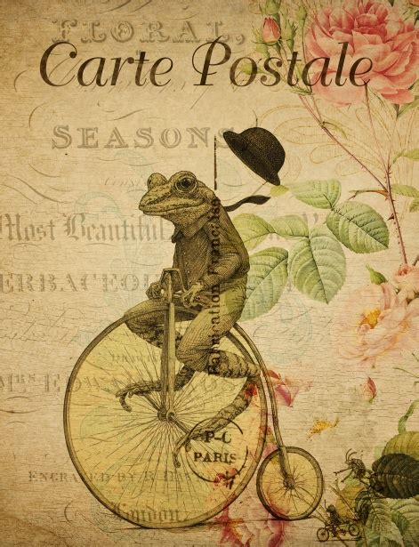 Cyling Vintage Humour Poster Free Stock Photo Public Domain Pictures Frog Riding Bicycle Postcard Free Stock Photo Public