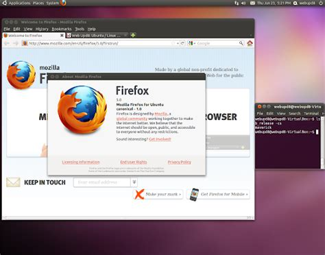 firefox themes mx4 firefox 5 lands in the firefox stable ppa for ubuntu 10 10