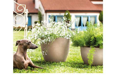 vasi di creta vasi di terracotta vasi di creta greco in mostra viaggi