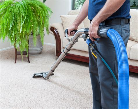 upholstery classes michigan carpet cleaning novi mi carpet menzilperde net