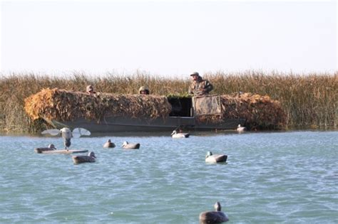 layout duck hunting lake st clair rob stanley hunting and fishing guide service