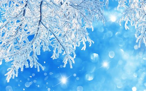 imagenes de nieve cayendo nieve related keywords nieve long tail keywords keywordsking