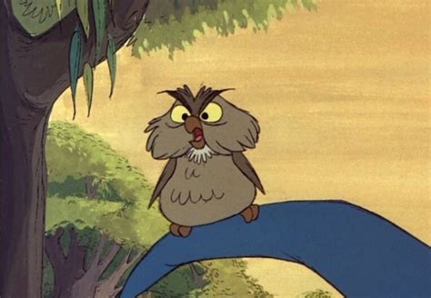 film cartoon owl cute owl movie cartoons and drawings fubiz media