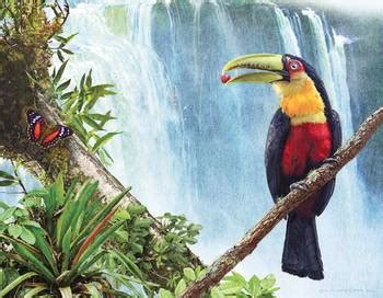 cuisine design industrie 4031 breasted toucan by the falls by r christopher vest