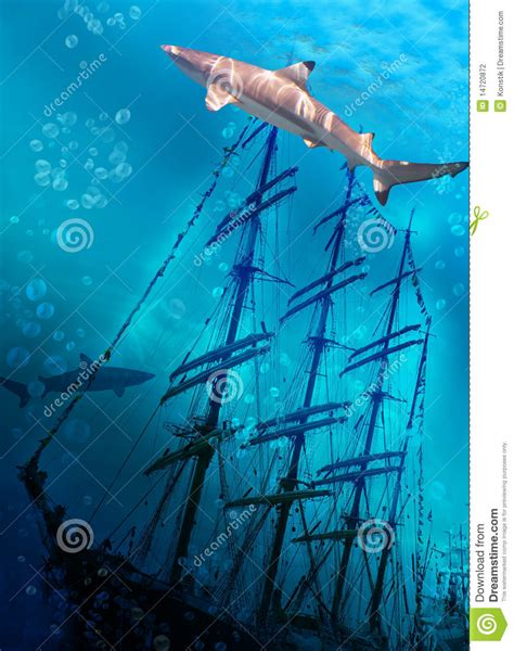 Sink Or Swim Lbi sinking ship on sea bottom and sharks stock photography image 14720872