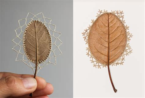 pattern is achieved when an artist susanna bauer carves fascinating crocheted leave