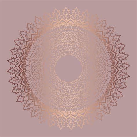 rose gold background  vector art   downloads