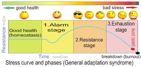 patterned response theory general adaptation syndrome jwmatterer
