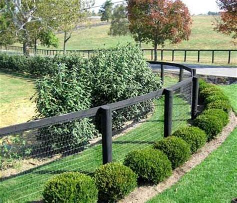 Garden Fence Ideas For Dogs Best 25 Fence Ideas On Fence Ideas Cheap Garden Fencing And Fence For Dogs