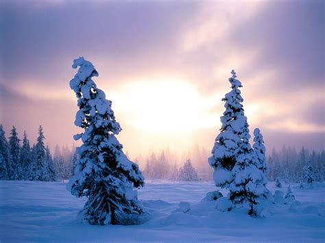 wallpaper desktop winter wallpapers winter backgrounds