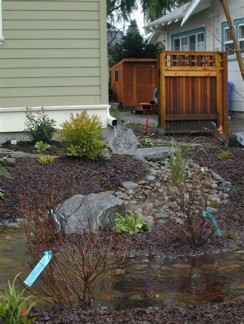 backyard drainage ideas rain garden ideas for redirecting rain water into the