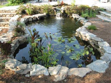 retention pond in backyard 58 best images about water gardens on pinterest gardens