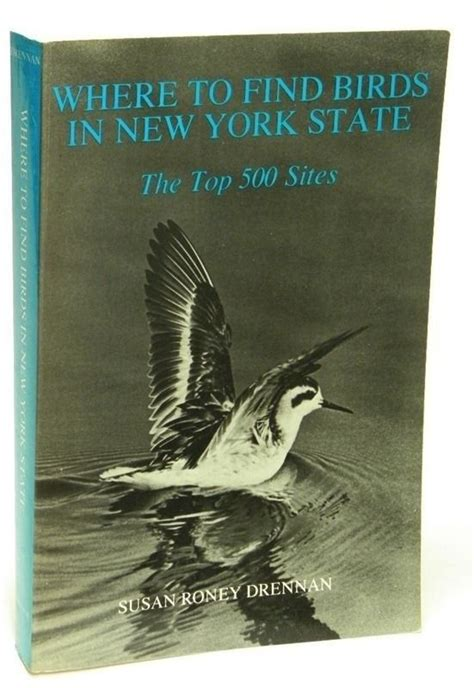 where to find birds in new york state top 500 sites by s
