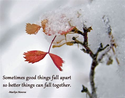 Falling Appart by Food For Your Soul How To Fall Apart With Grace Crunchy