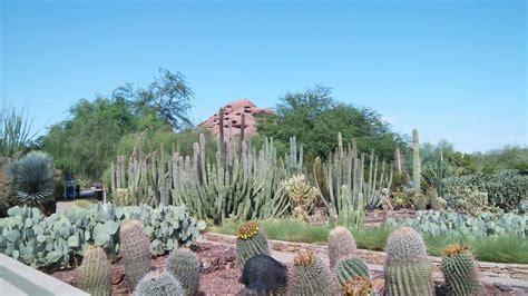 Restaurants Near Desert Botanical Garden Restaurants Near Desert Botanical Garden Gertrude S At The Desert Botanical Garden New Times