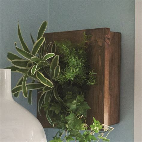 buy a planter stylish wall planters you can buy or make yourself